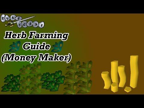 Runescape 2007 Herb Farming Guide | OSRS Money Maker