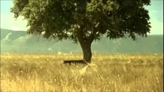 4 Μαύρα Κουστούμια (Soundtrack) - Στάχυα,πιάνο,μεσημέρι