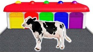 Aprender los colores con Vaca y animales domesticos en espa�...