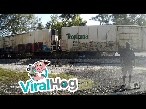 Frosty - Semi-Trailer Sliced in Half by Freight Train