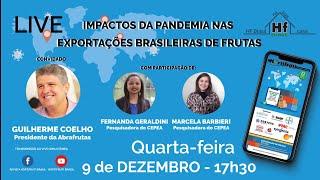Live HF Brasil - IMPACTOS DA PANDEMIA NAS EXPORTAÇÕES BRASILEIRAS DE FRUTAS