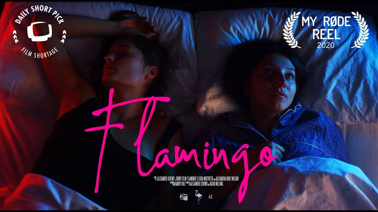 FLAMINGO | MY RØDE REEL 2020
