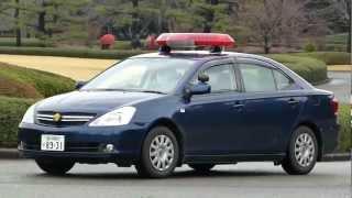 皇宮警察皇居東御苑の警備車両。Guard vehicle of the Imperial Guards. thumbnail