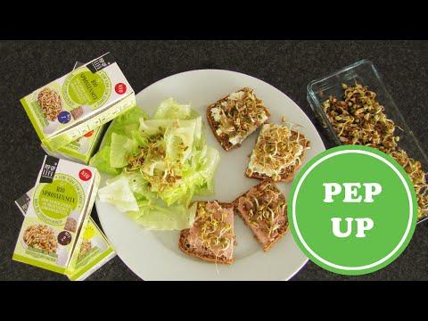Keime und Sprossen ziehen mit Sprossen von PEP UP LIFE