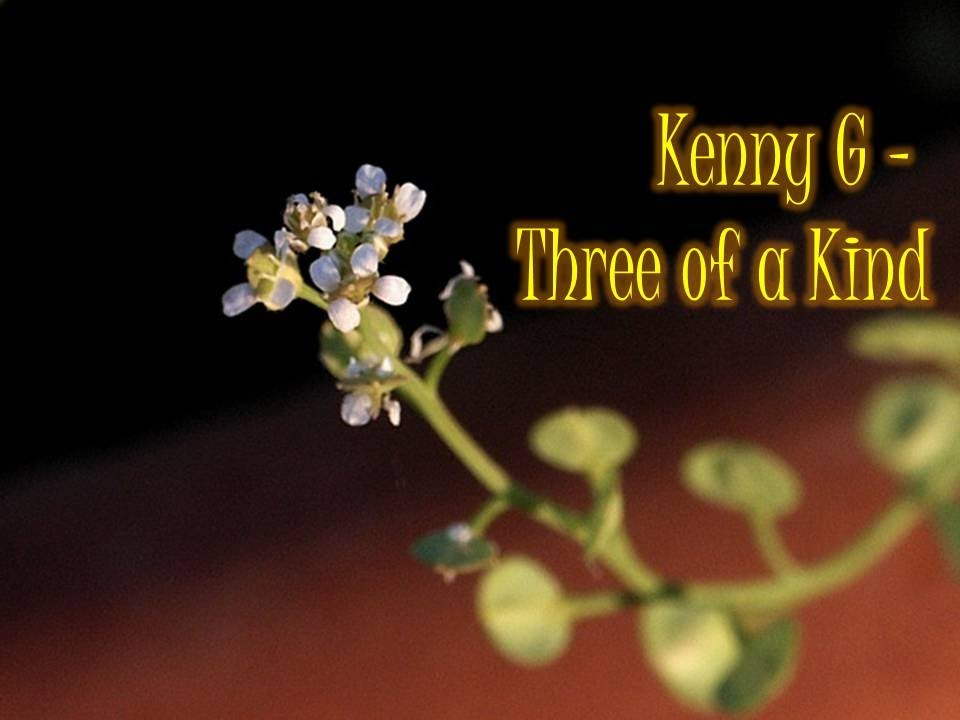 kenny-g-three-of-a-kind-kennyguille