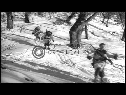 US Army Ski Troops Of 86th Regiment, 10th Mountain Division Advance Through Snow ...HD Stock Footage