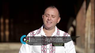 Tavi de la Oradea   -M-am intors acasa-    [Videoclip Official 2017]