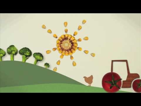 Winner: RSA / Nominet Trust Short Film Competition: Food Rules for Healthy People and Planet