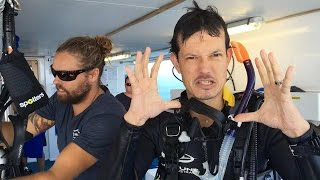 Diving with the Spirit of Freedom on the Great Barrier Reef