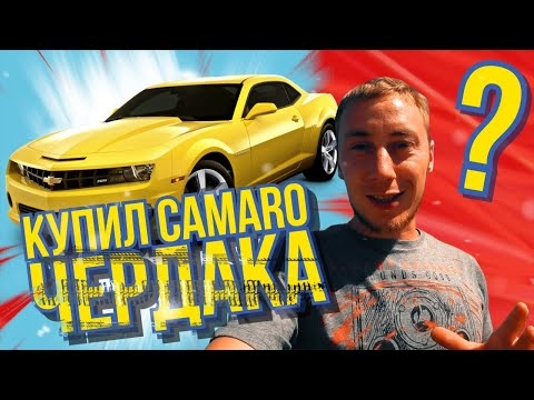 InFam Купил Camaro SS бамблби с канала Чердак . Влог из америки . Калифорния VLOG о Bumblebee