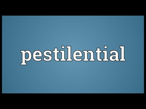 Header of pestilential