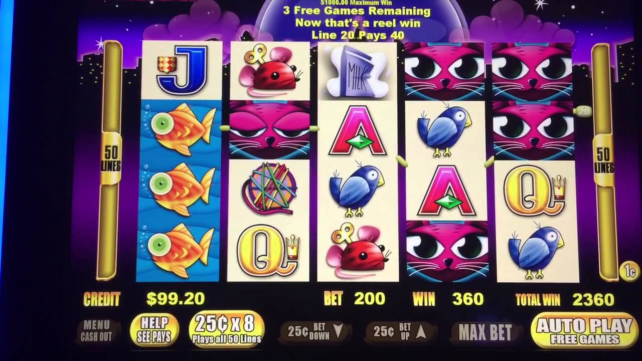 miss slot machine