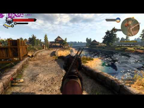 The Witcher 3 PC Stutter (on Horse)