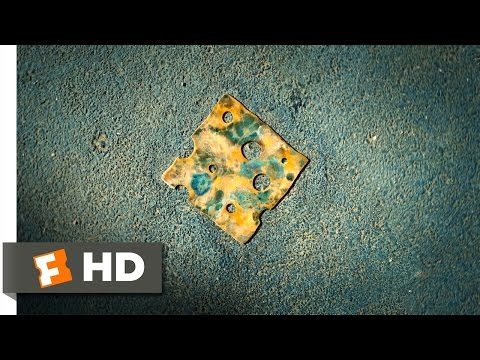 Diary of a Wimpy Kid (2010) - The Cheese Touch Scene (1/5) | Movieclips