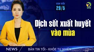 Bản tin tối 29/5: Trung Quốc phong tỏa thành phố 2,8 triệu dân vì dịch viêm phổi Vũ Hán