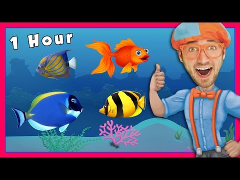 Story Time and More! Educational Videos for Kids by Blippi