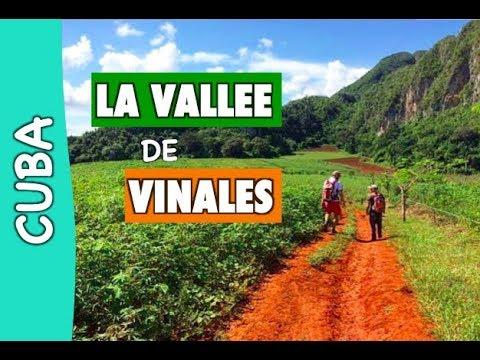 RANDONNEE DANS LA VALLEE DE VINALES [CUBA]