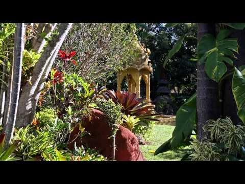 Dallas Kampe's garden - Mount Cotton, Queensland, Australia