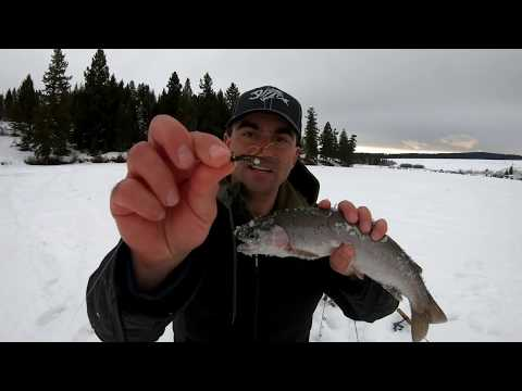 Hair Jigs Ice Fishing For Trout Deadly Effective