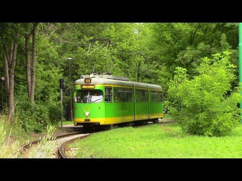 Trams in Poznań Tramwaje w poznaniu Straßenbahn Posen (1/2)