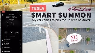 Tesla: 1st Look at Smart Summon