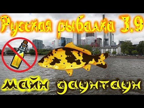 русская рыбалка карпы