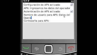 Configuracion de APN de Internet en Blackberry 6 0