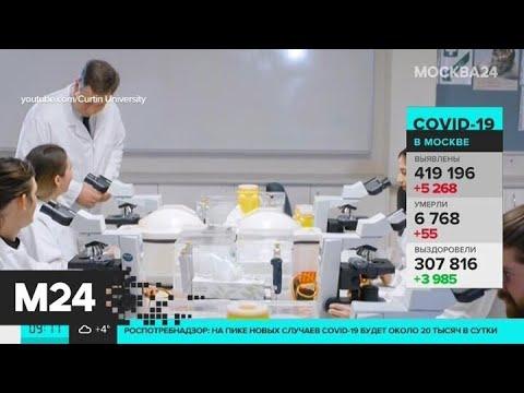 Эксперты рассказали, когда закончится пандемия коронавируса - Москва 24