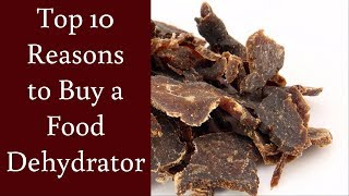 The Top 10 Reasons to Buy a Food Dehydrator