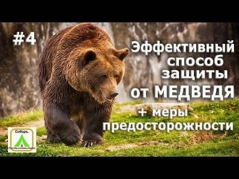 Эфективный способ защиты от медведя. #4 + меры предосторожности