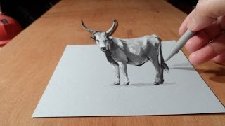 Trick Art, Drawing 3D Grey Cattle, Time Lapse