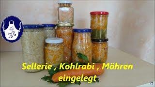 Sellerie - Kohlrabi - Möhren einlegen