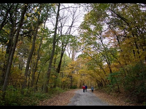 Fact or Fiction: Is Hummel Park Haunted?