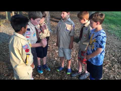What do Cub Scouts Do?