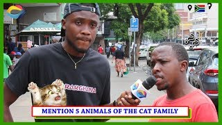 Mention 5 Animals of the CAT FAMILY | Street Quiz South Africa | Street Quiz Mzansi | Funny Videos