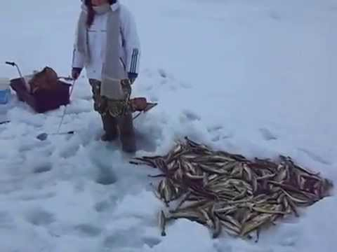 как сделать прикормку для рыбы речной