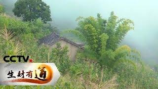 《生财有道》 20190906 探访悬崖村 感受脱贫路| CCTV财经