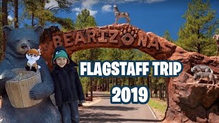 BEARIZONA WILDLIFE PARK 2019 | WILLIAMS, AZ | FLAGSTAFF TRIP