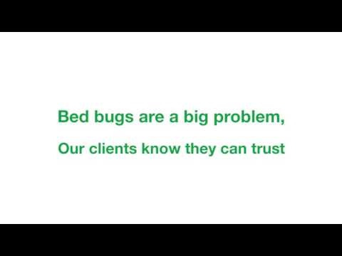 Kley Law I Bed Bug Lawyers in Hotels