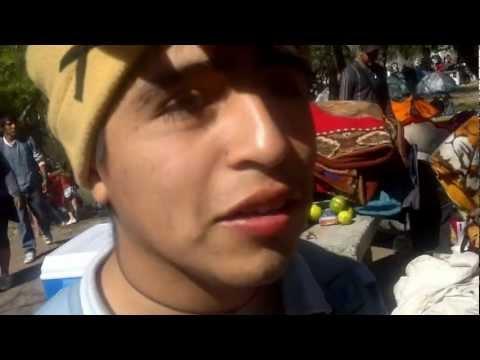 """Los Videos Divertidos de Animal Planet """"Los Blancones"""" Parte 1"""