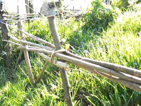 Petite cl ture en plessis au jardin botanique d 39 auvergne youtube - Petite cloture jardin ...