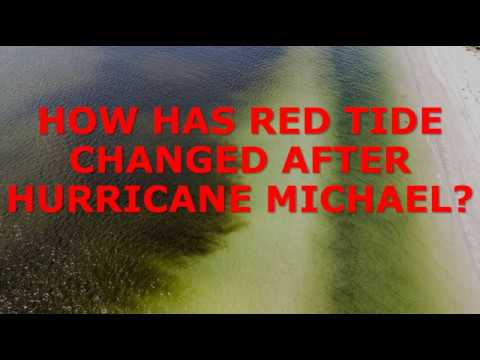 HOW DID HURRICANE MICHAEL IMPACT RED TIDE??     October 14, 2018