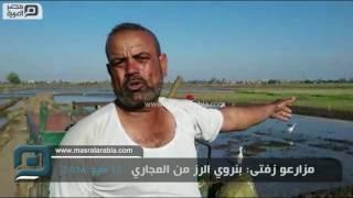بالفيديو| كارثة في الغربية.. المجاري تروي عطش الأرز