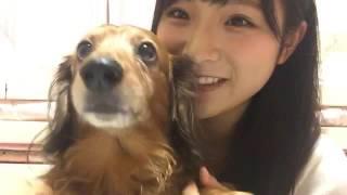 161021 左伴 彩佳(AKB48 チーム8) SHOWROOM.