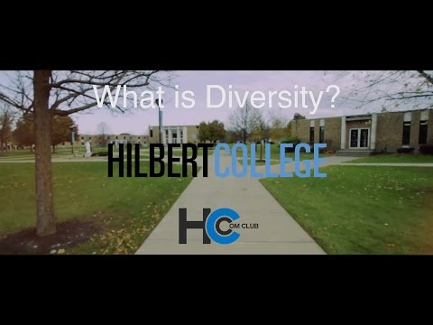 What is Diversity? - Hilbert College