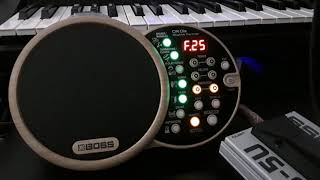 BOSS DR-01s Demo of the factory presets Top sound