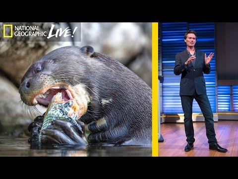 Inside the Amazon: A Photographer's Story | Nat Geo Live