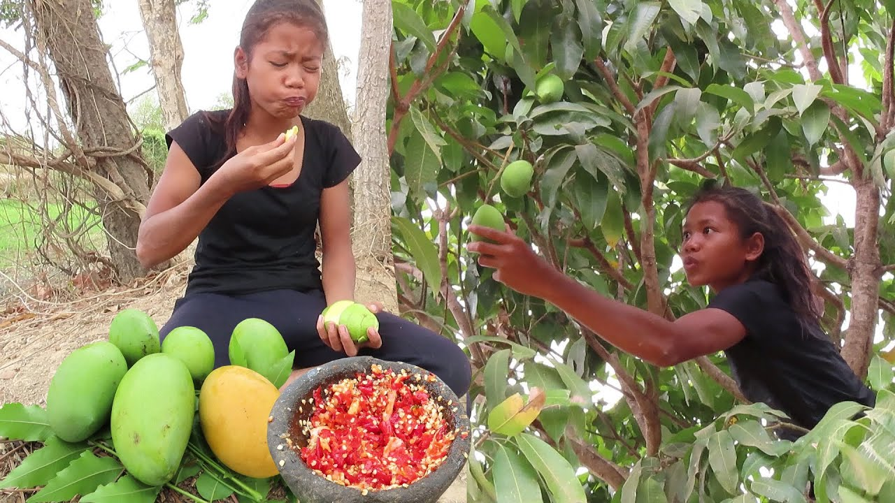 Download Natural Sour Green mango and Ripe mango with Salt & Hot Chili for Lunch