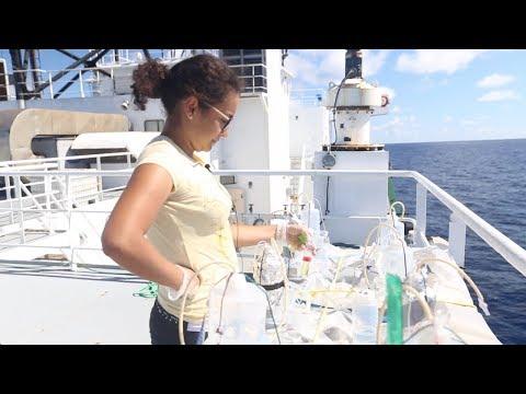 VOS4-13 Full Episode - Measuring Mercury In Ocean Fish