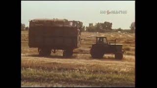 1988 год. Жатва в Черниговской области.